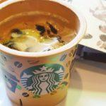 スタバの新作プリン(コーヒー&クリーム)のカロリーや口コミは?