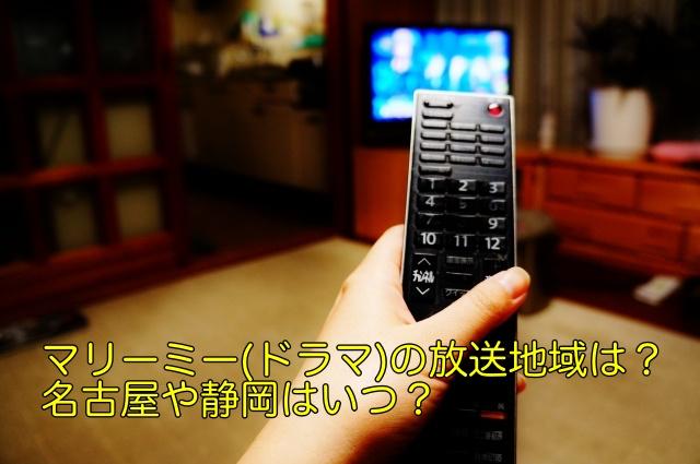 マリーミー ドラマ 放送地域